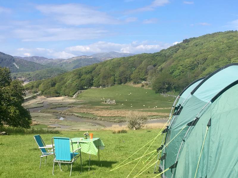 Estuary Field Grass Tent Pitch