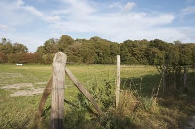 Beautiful green countryside, all around.