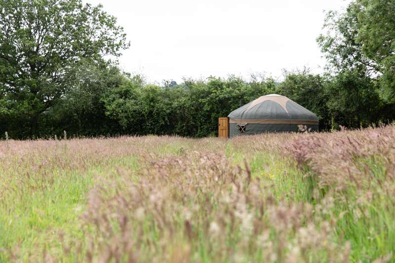 Surrey Hills Yurts Mad Horse Copse and Meadow, Logmore Lane, Westcott, Surrey RH4 3JN