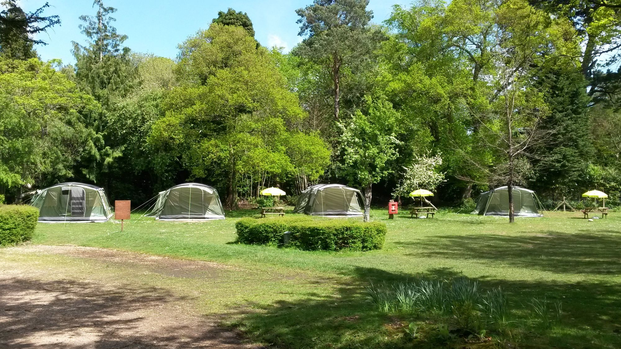 Excellent facilities inside and spacious camping and glamping options outside in the grounds of this well located New Forest youth hostel.