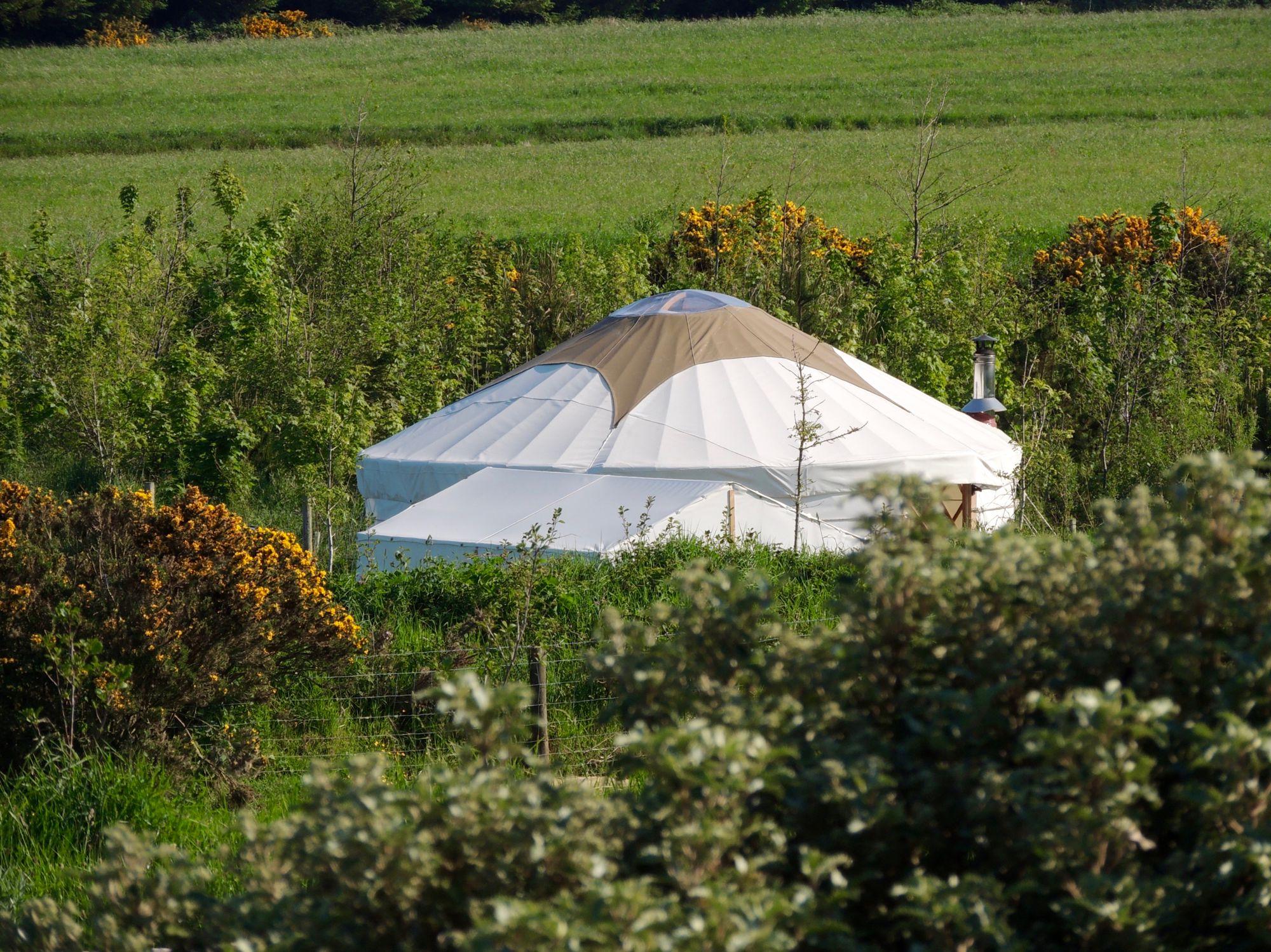 Yurt Glamping in Pembrokeshire