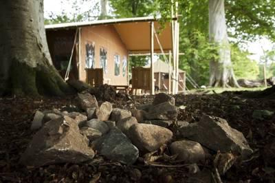 Luxurious safari-style camping on the Scottish borders.