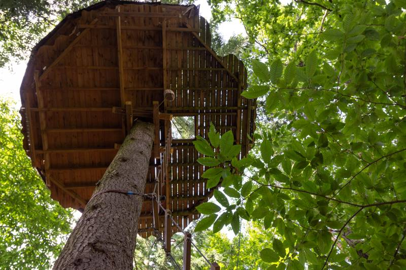 """Ecureuil"" Squirrel Tree House"