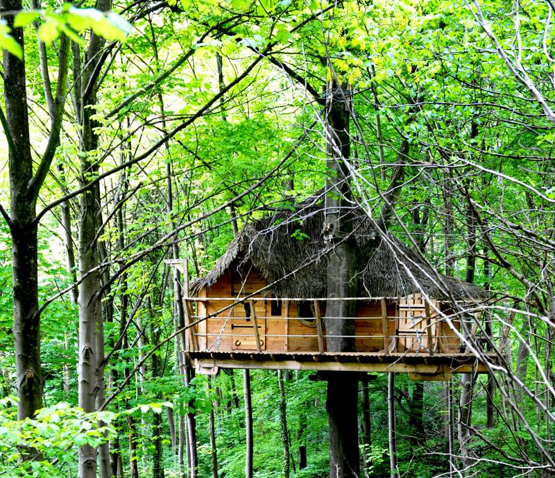 """Le Fer à Cheval"" Tree House"