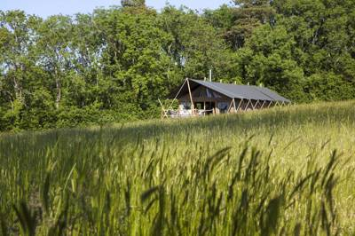 Reconnect with nature in a spacious safari tent, overlooking the hilly downlands of Hampshire's Meon Valley.