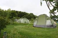 Tent Pitch With Electricity