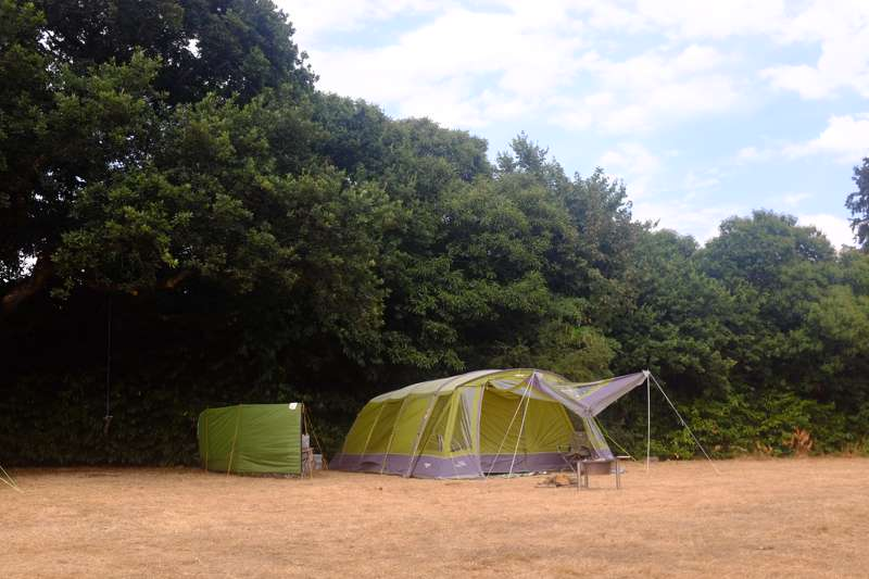 Meadow Pitch - one tent only