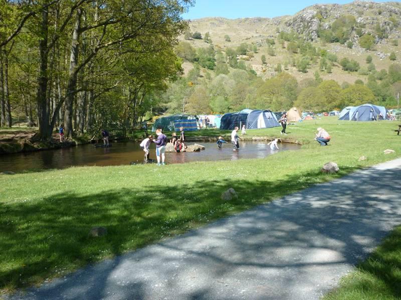 Medium Tent Grass Pitch (no electric hook-up)
