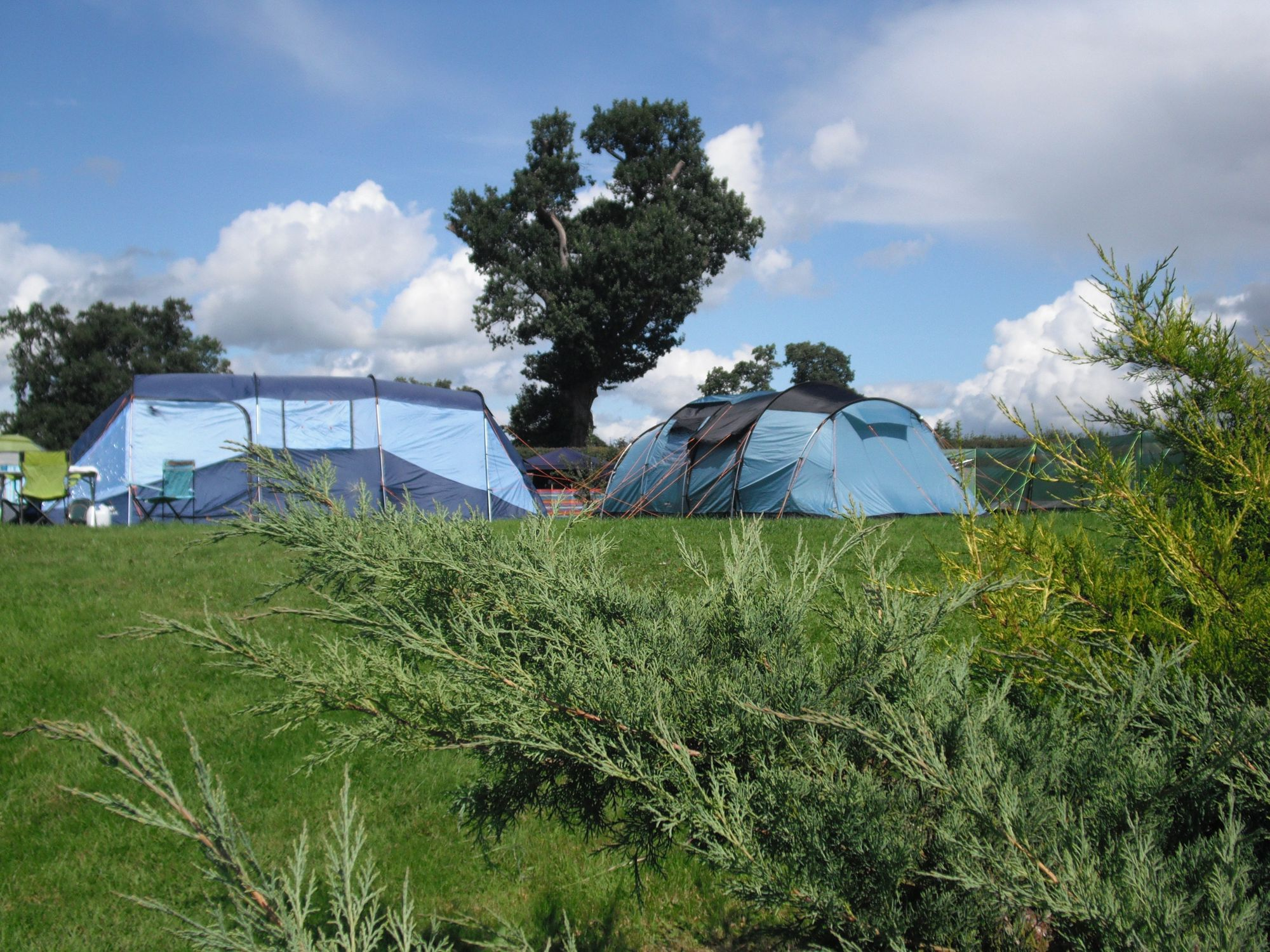 This inviting, well-maintained and peaceful little site in the heart of the Welsh countryside strikes that all-important balance of remaining unspoiled, yet still featuring homely facilities that makes camping comfortable.