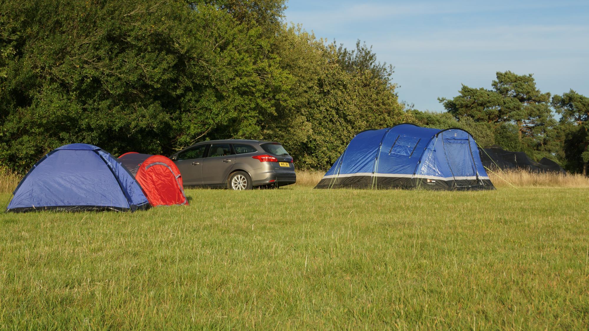 Campsites in Hampshire – I Love This Campsite