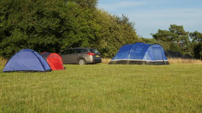 Campers pitch up at Sleepbrook Farm three miles from the New Forest.