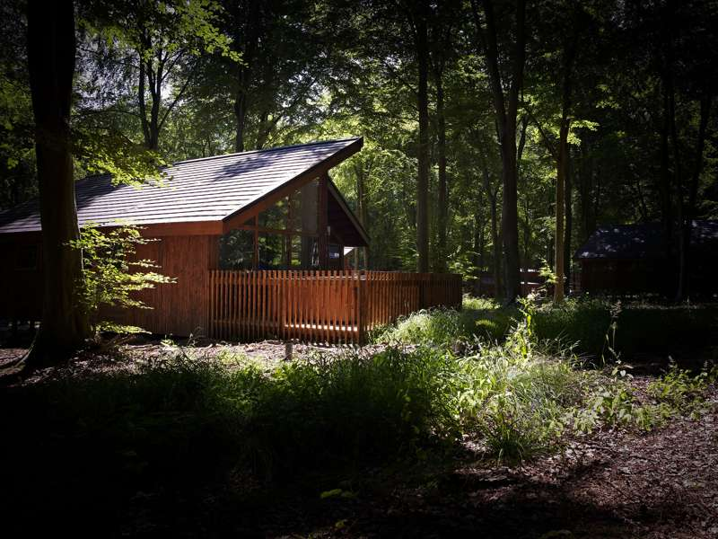 Win a weekend break with Forest Holidays!