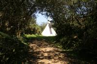 Boys - Large Tipi - Private Site