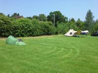Grass Pitch with 6amp electric hook up