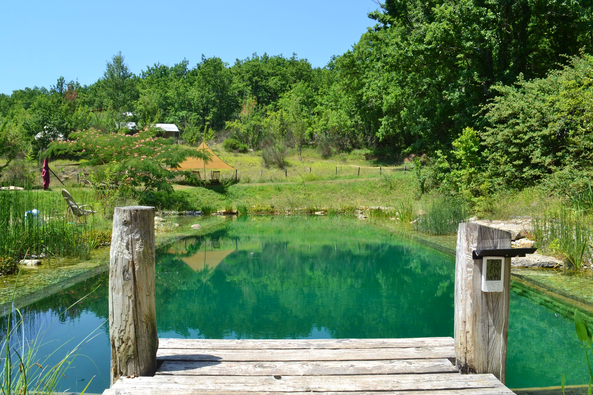 Dive into our natural swimming pool. 20m long and a haven for local wildlife.