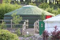Dog Friendly Family Yurt