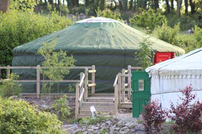 Dog friendly yurt