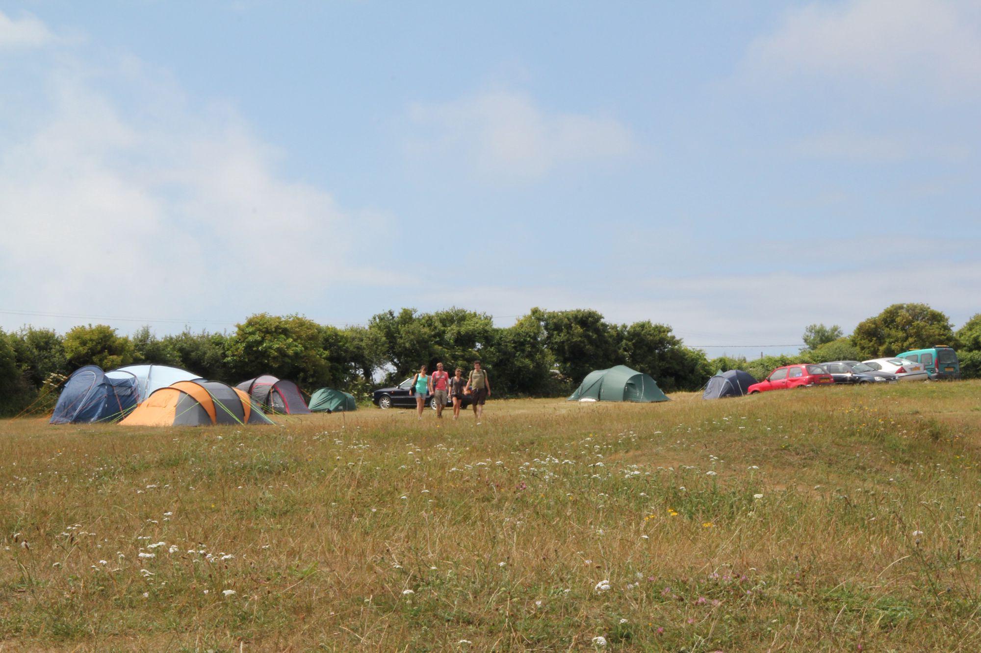 Acton Field