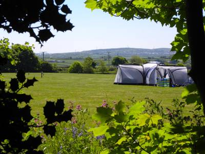 The 36 acres of fields, gardens and woodland that surround Trewan Hall make for an idyllic place to pitch up.