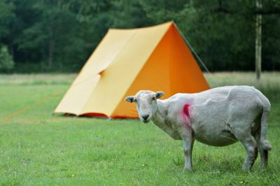 Campsites in Conwy – Highest-rated Conwy campsites – Cool Camping