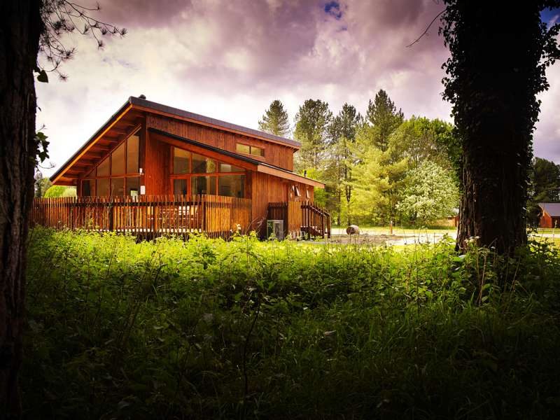 Forest Holidays Thorpe Forest Shadwell  Thetford  Norfolk  IP24 2RX