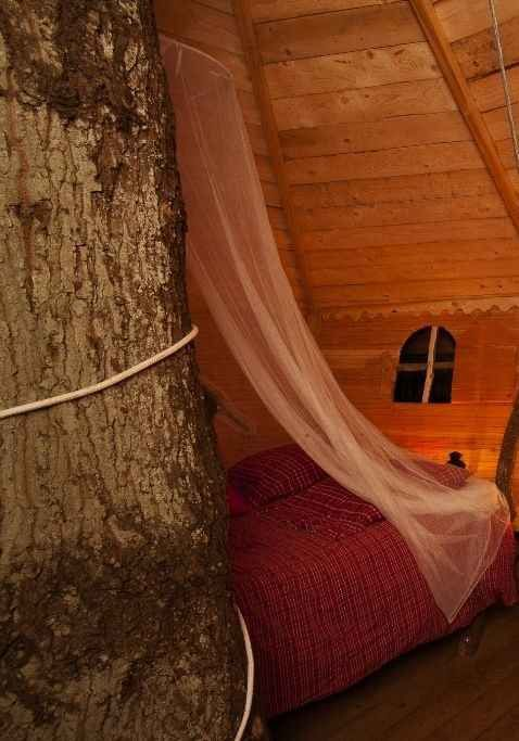 Treehouse Glamping in France