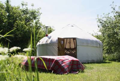 Secluded yurt glamping near Cambridge