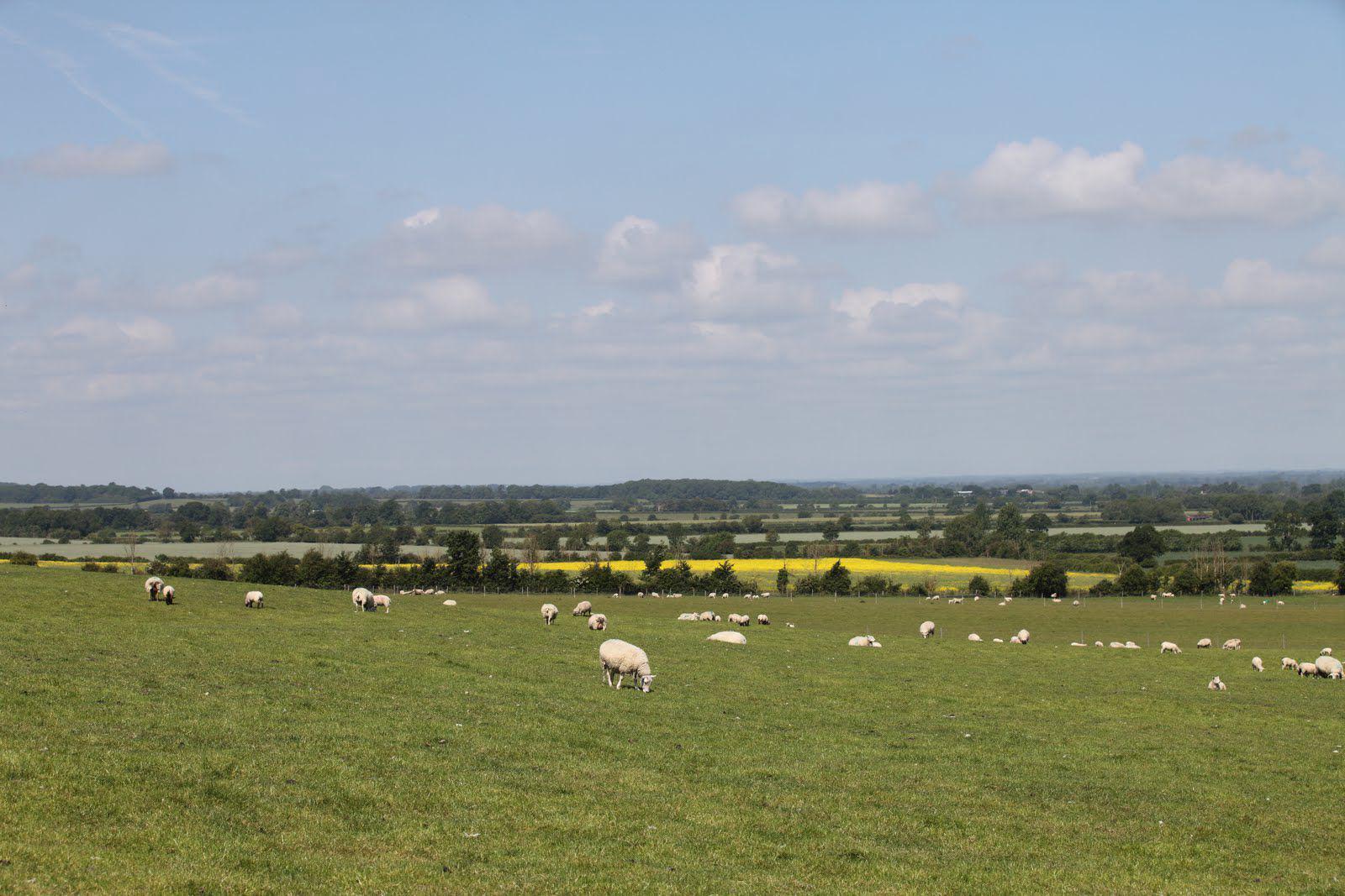 Swindon Camping | Campsites Near Swindon, Wiltshire