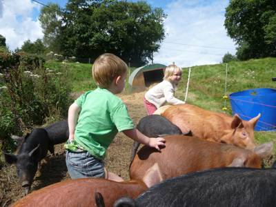 A traditional farm in the South Downs offering spectacular family glamping.