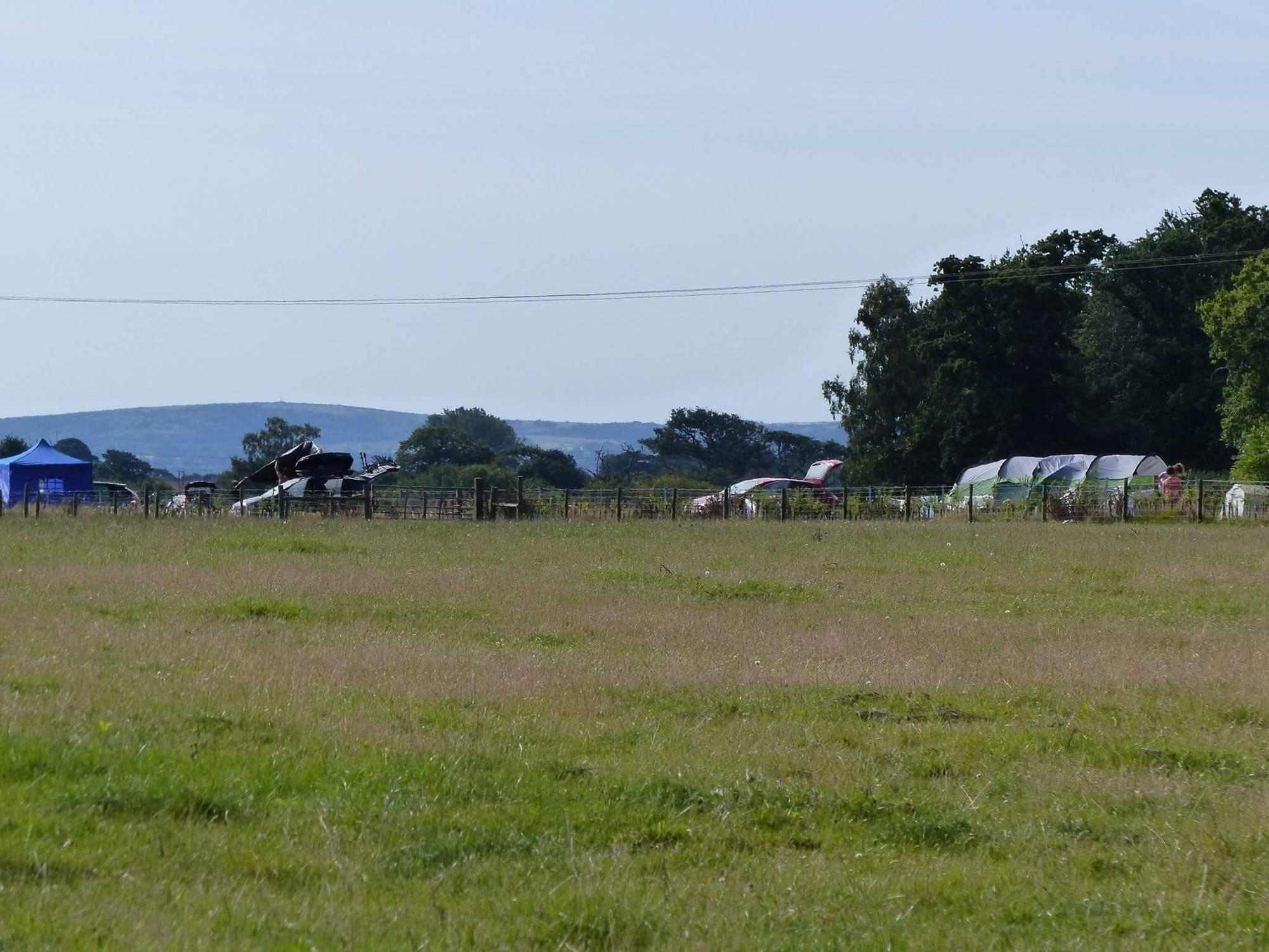 Pitch your tent wherever you like at this New Forest sheep farm campsite.