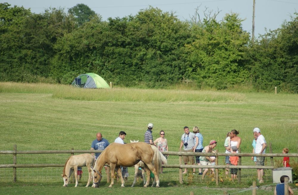 Campsites in Warwickshire