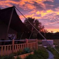 Hawk Safari Lodge