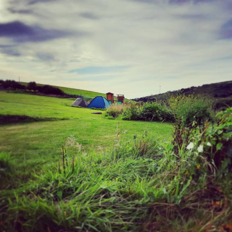 Large Grass Pitch