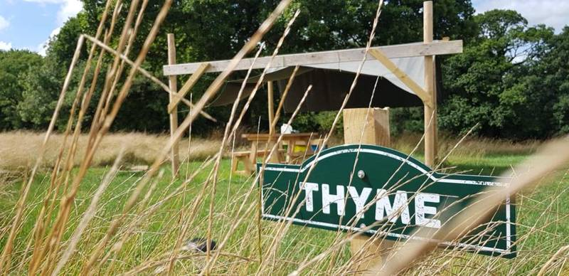 Thyme - Grass Pitch