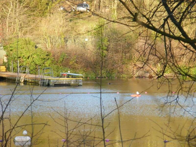 Hampstead Heath Bathing Ponds