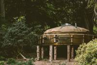 After the Gold Rush - Yurt