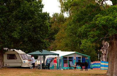 Slap bang in the middle of New Forest, Denny Wood is a wonderfully peaceful place to camp, surrounded by enchanting oak trees and wild ponies.