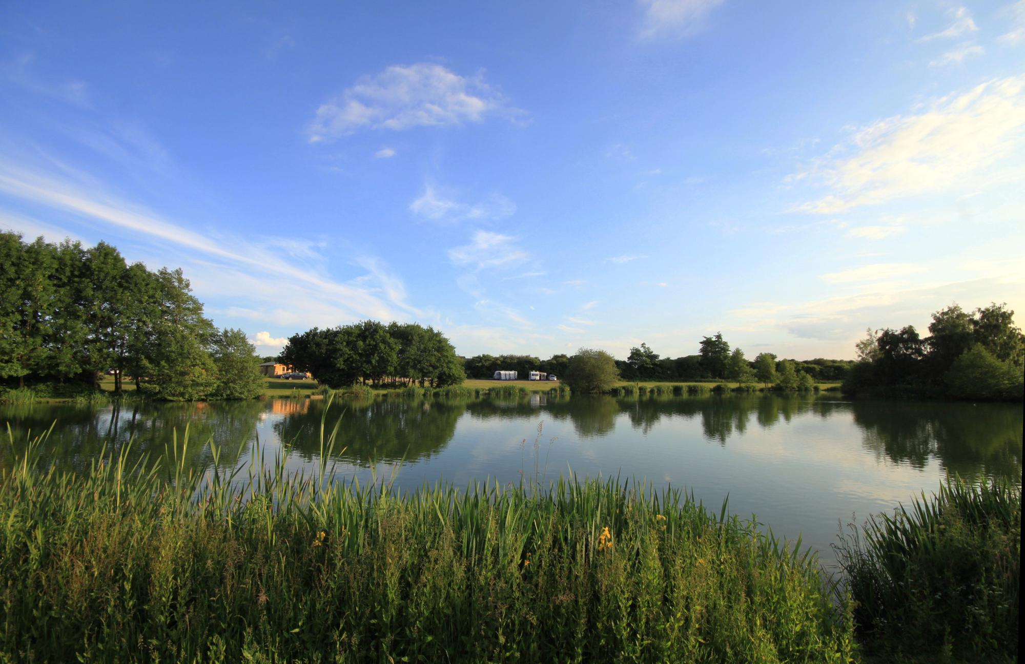 Brook Meadow