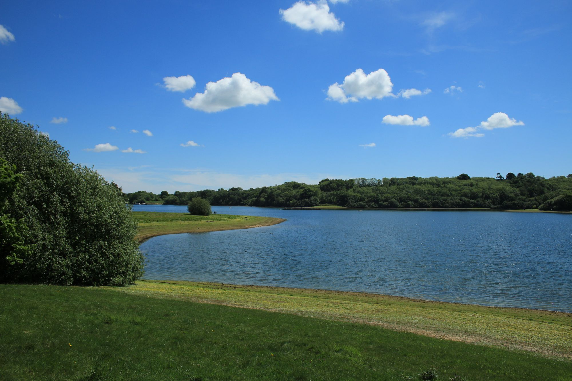 Glamping at bewl water kent for Fishing campsites near me