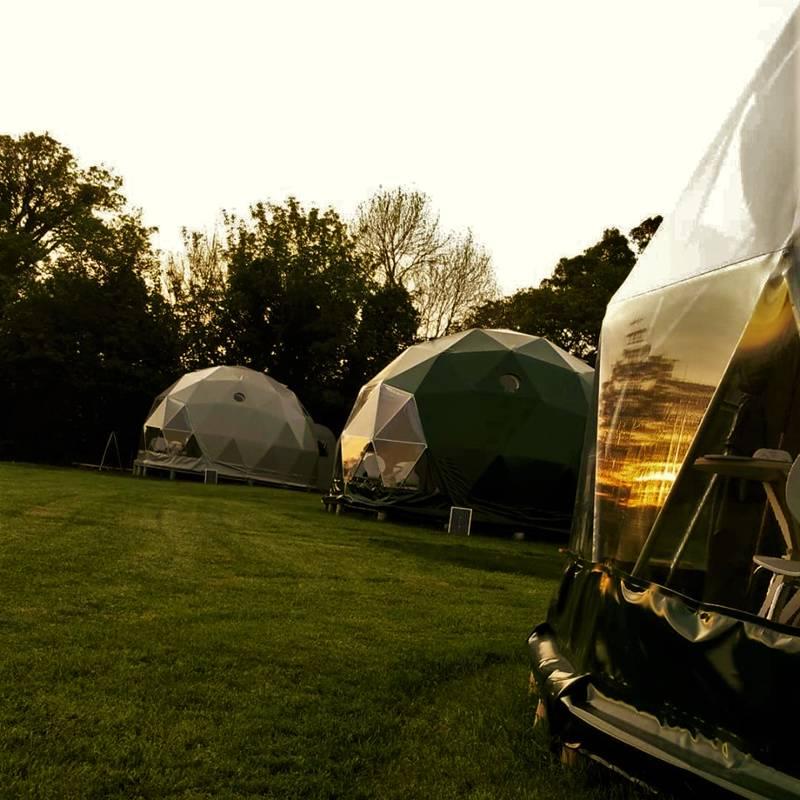 Cowslip Dome