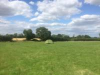 20 Pop-up Camping Meadow Pitch (1st Field)