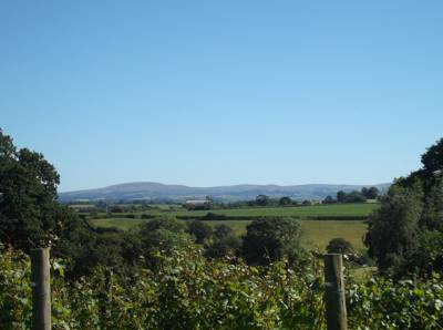 The view from the campsite to Dartmoor
