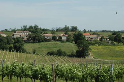 A quiet countryside spot in the vineyard striped Gironde valley.