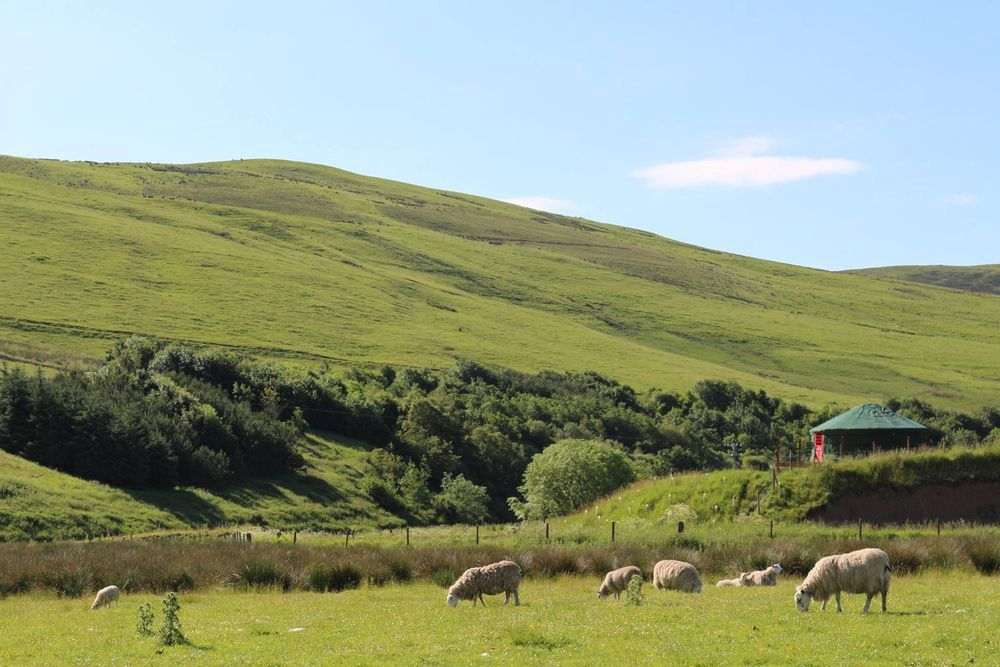 Campsites In Scottish Borders Top Rated Sites In The