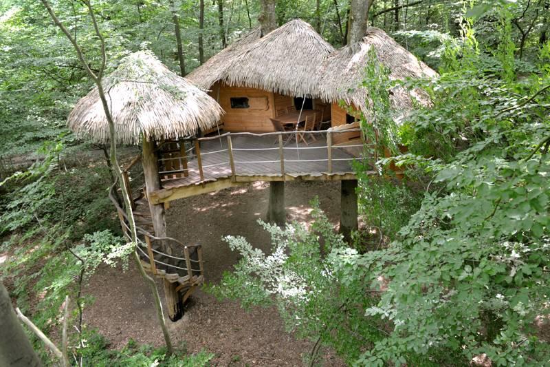 """Robin des Bois"" Tree House"