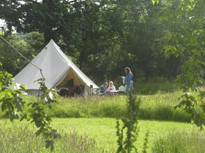 Naturesbase Tyngwndwn Farm, Cilcennin, Lampeter, Ceredigion SA48 8RJ