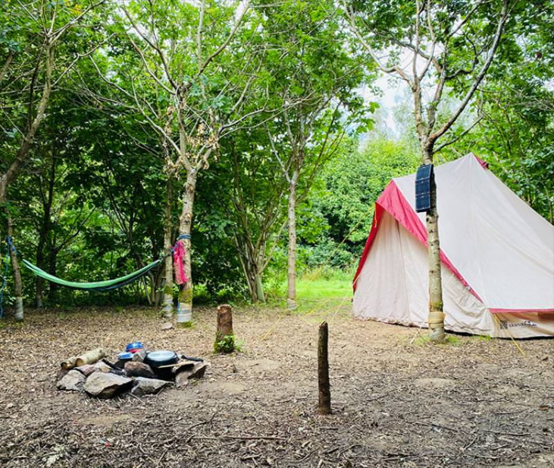 Camp Luna - Tent Pitch In Woodlands