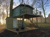Lofty the Treehouse