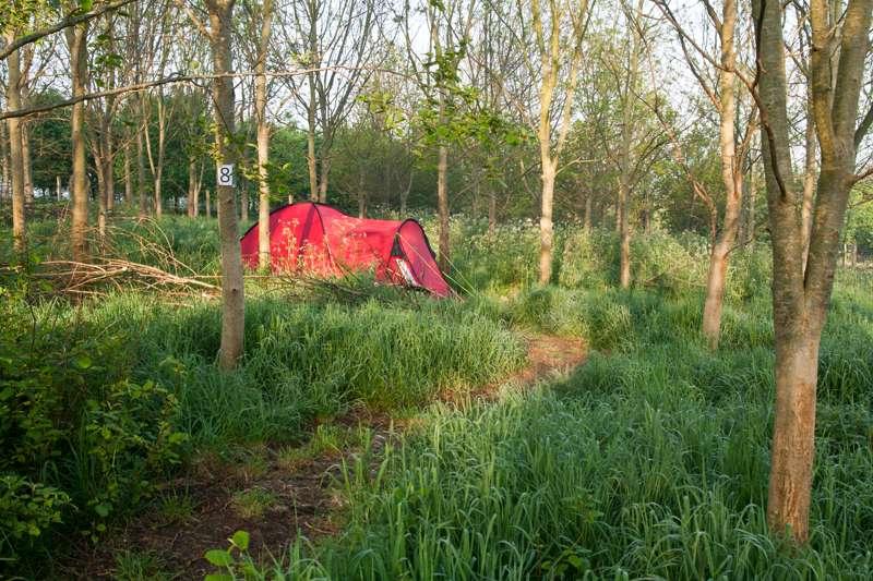 4m x 4.5m   Woodland Pitch No. 8