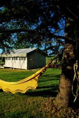 Safari Tent Glamping